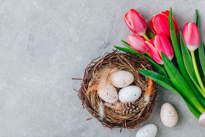Easter eggs in the nest with pink tulips bouquet on gray stone background