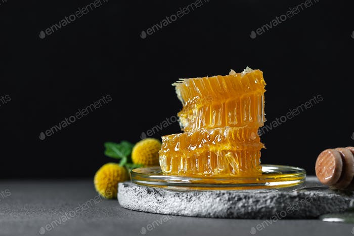 Honeycombs on a concrete table on a black background. Image with
