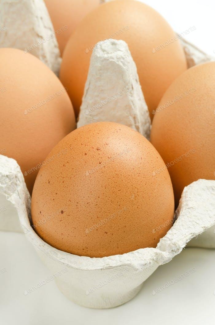 Braune Hühnereier in grauem Eierkarton