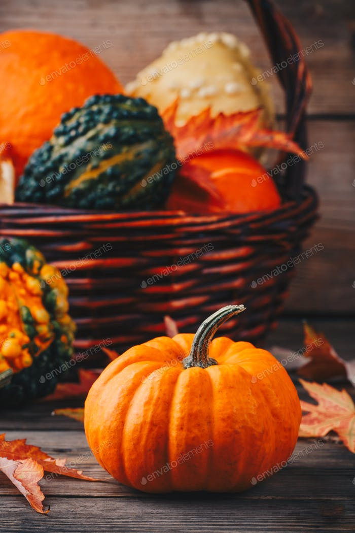 Colorful pumpkins and fall leaves on wooden background