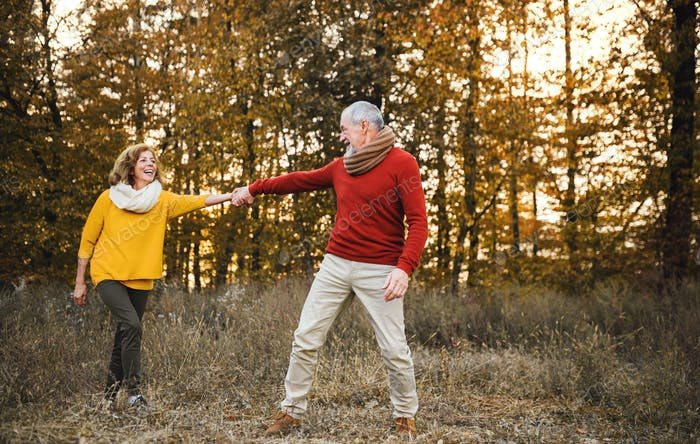 A senior couple on a walk in an autumn nature at sunset, holding hands.
