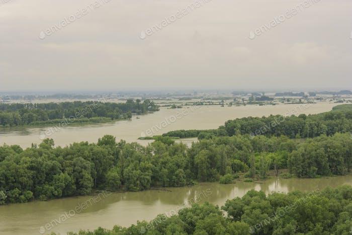 Verschütten Fluss in einem grünen Wald natürlichen Hintergrund