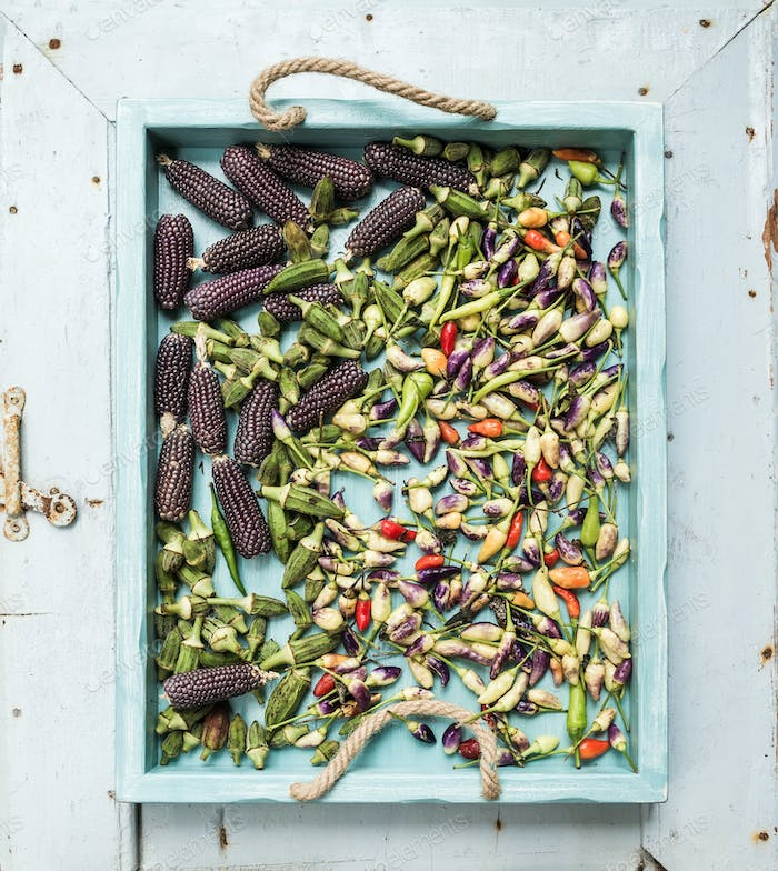 Okra, spicy peppers and small black corns on blue wooden tray over light rustic backdrop, top view.