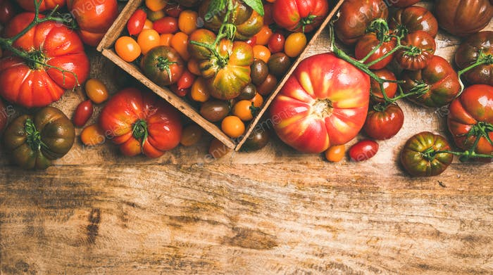 Flat -lay of fresh colorful tomatoes over wooden background