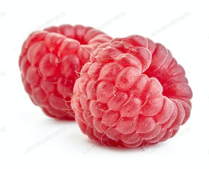 Two ripe red raspberries