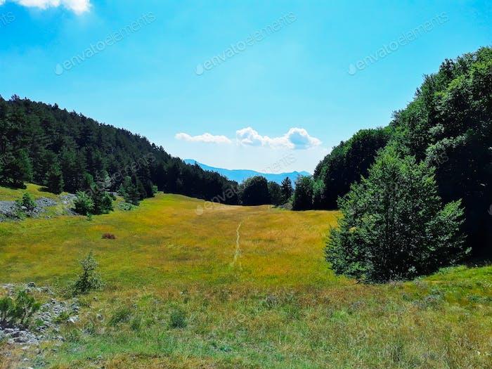 Fied in Italian mountain area, Abruzzo, on a sunny day
