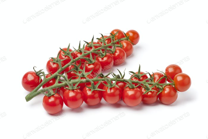 Small cherry tomatoes on a vine