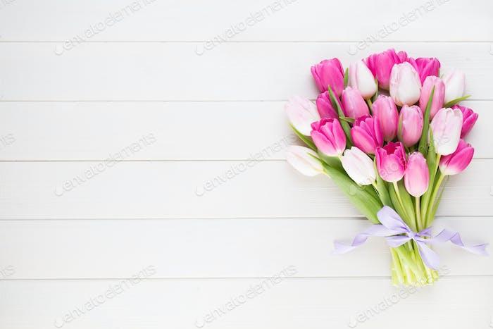 Tulipán rosa sobre el fondo blanco. Fondo de Pascua