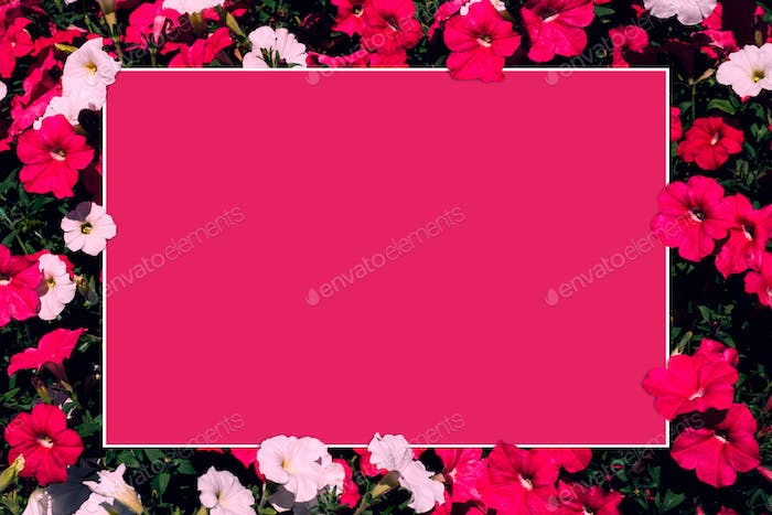 Creative layout made of pink and white flowers with paper card note.