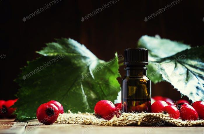 Essential oil of hawthorn
