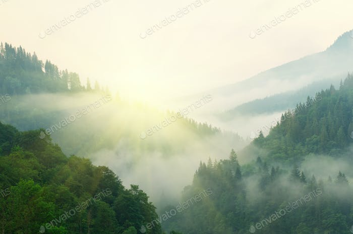 Mountain aerial morning landscape.