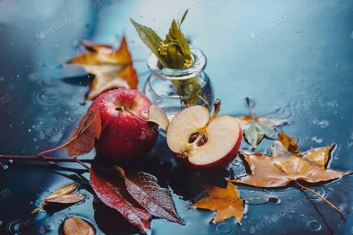 Autumn red applesunder rain on a wet table in backlight