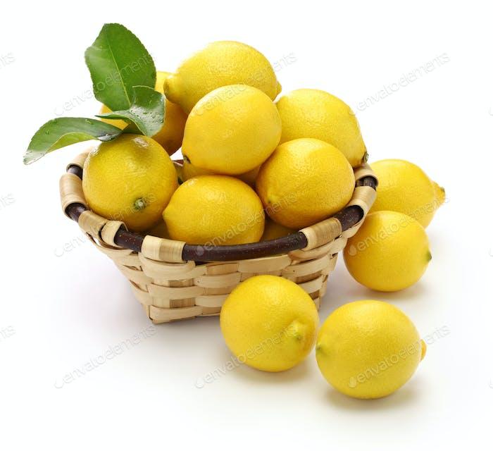 Pestizidfreie organische Zitronen auf weißem Hintergrund isoliert