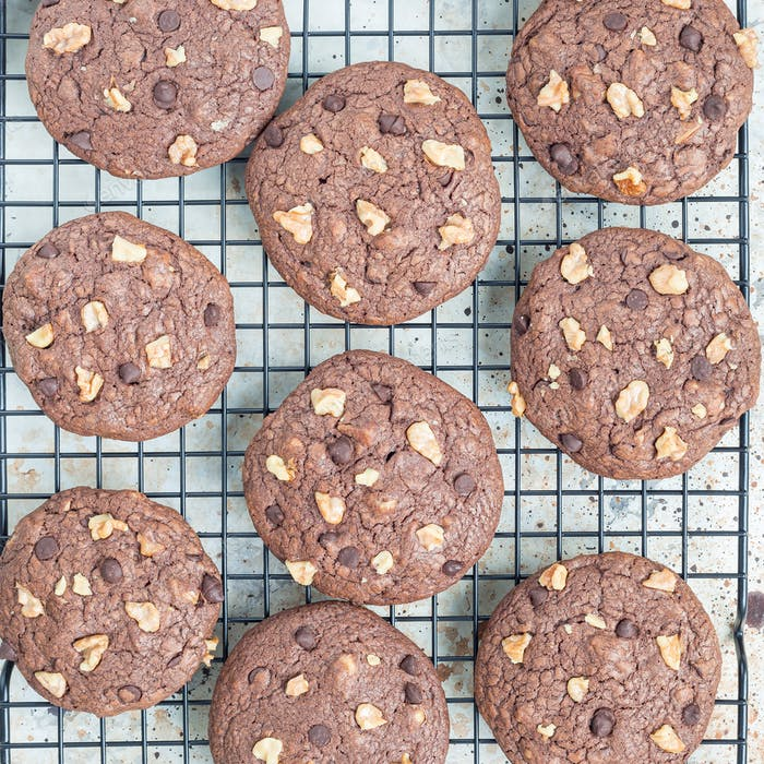 Chocolate cookies with walnuts and chocolate chips on the cooling rack, top view, square
