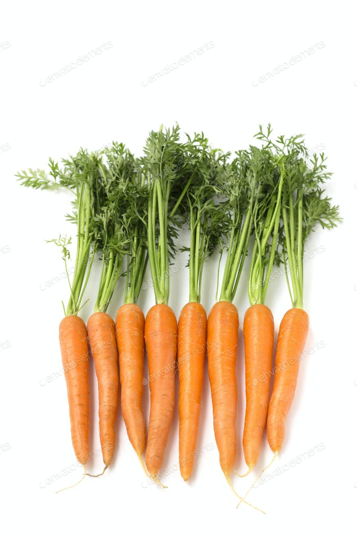 group of carrots with foliage on white background