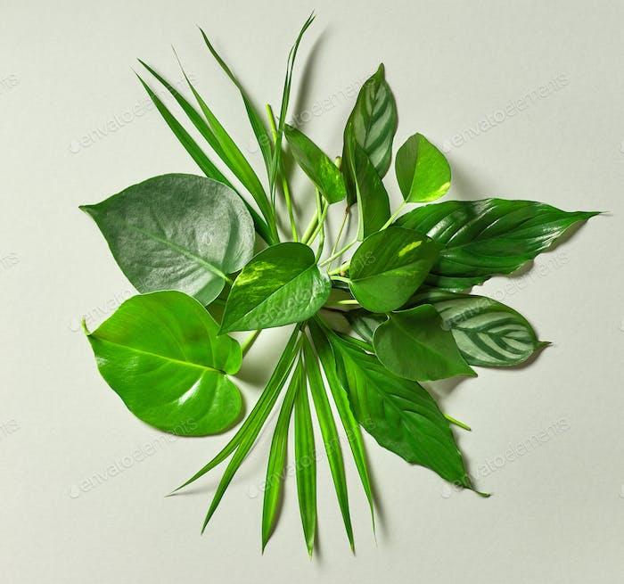 Bouquet von tropischen Blättern