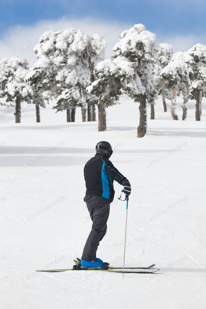 Skier on snowy forest slope. White mountain landscape. Winter sport