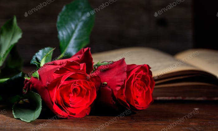 Red roses and a vintage book on dark background