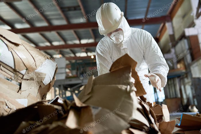 Worker in Protective Suit Sorting Cardboard