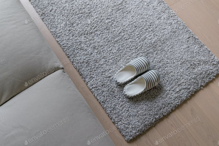Slipper on the carpet at home