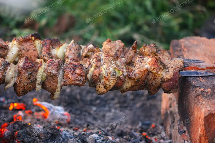 Appetizing pieces of roasted meat on the fire.