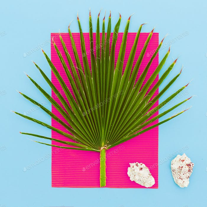 Sea tropical style. Palms and seashells. Minimal art