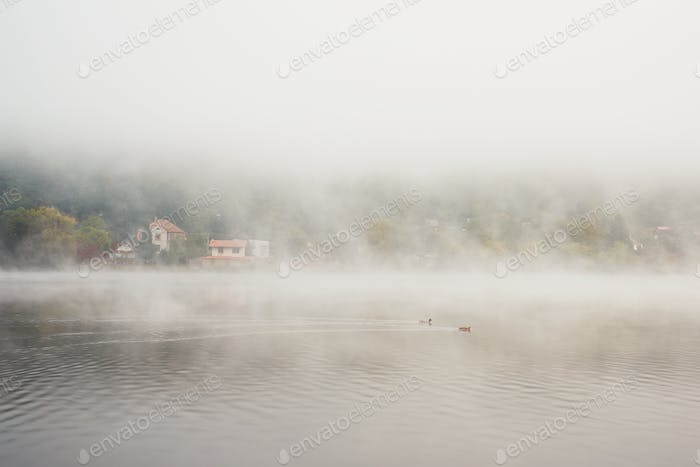 Village in mysterious fog