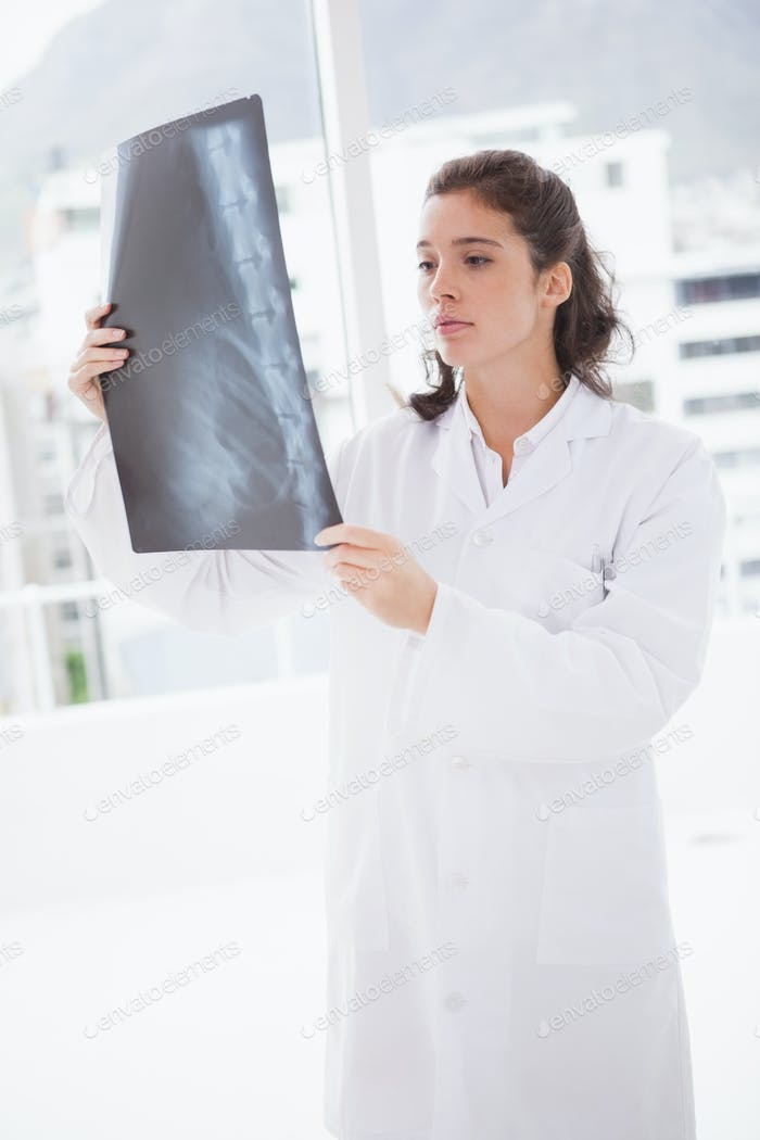 Brunette doctor analyzing xray results in examination room