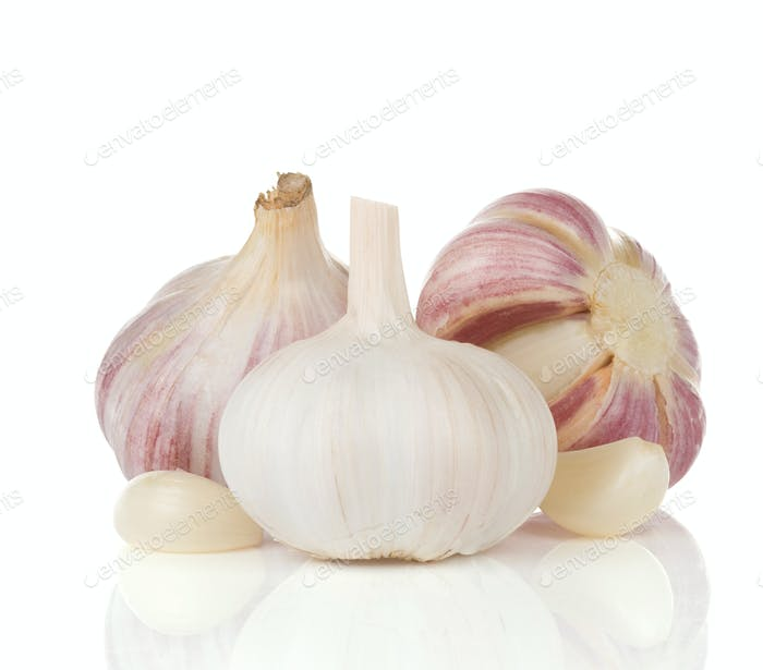 garlics isolated on white