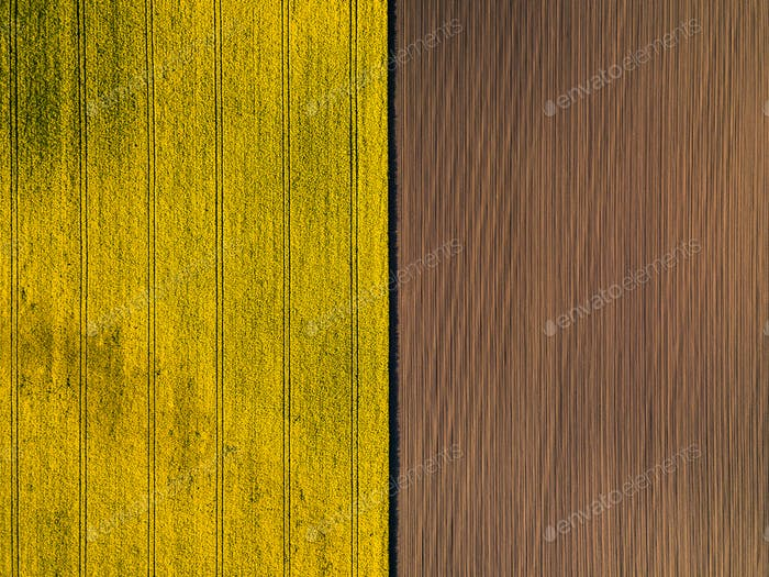 Natural yellow and brown flat background. Drone perspective.