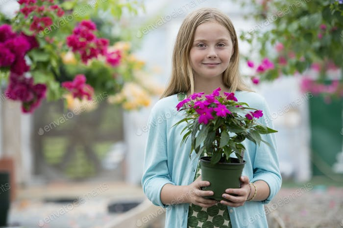 An organic flower plant nursery. A young girl holding a flowering plant.