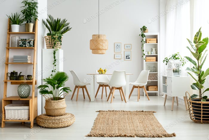 Plants and rug in natural dining room interior with white chairs
