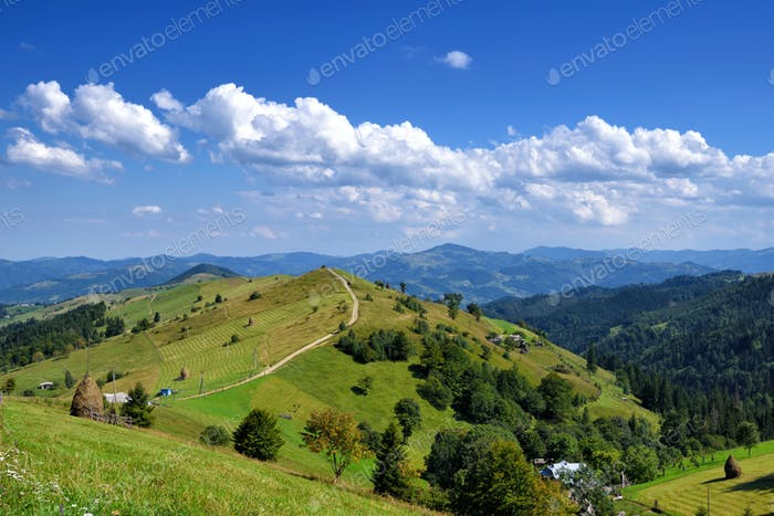 Beautiful sunny day is in mountain landscape. Carpathian, Ukrain