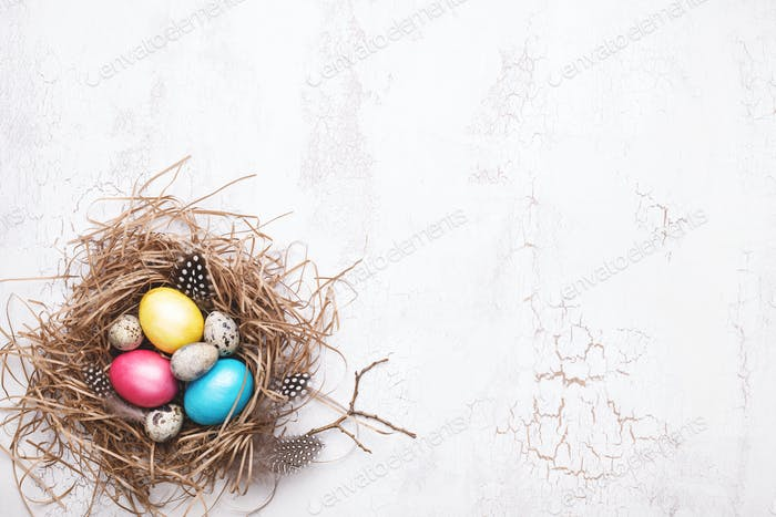 Bunte Ostereier im Nest auf weißem Hintergrund.