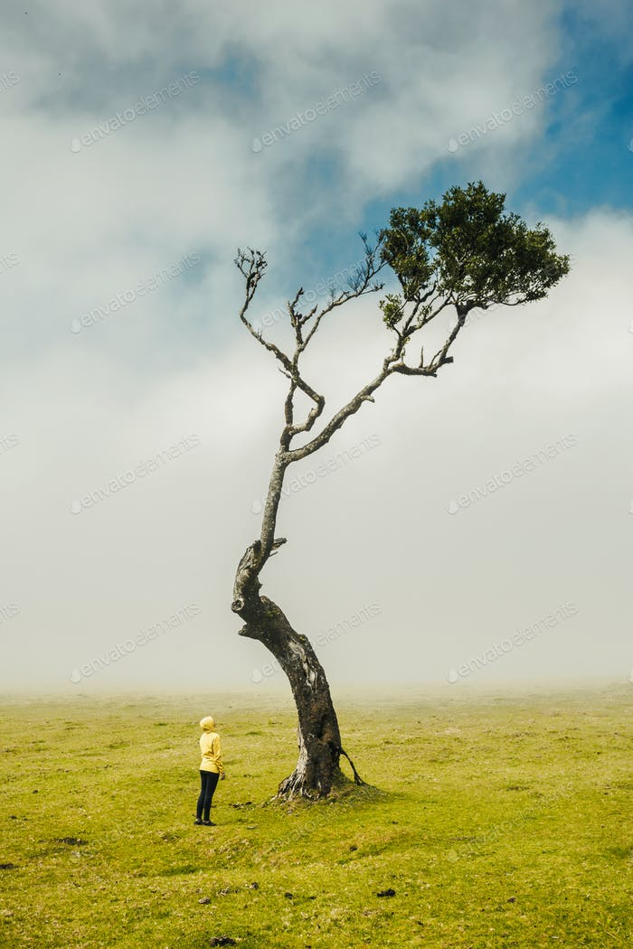 Woman and the Tree
