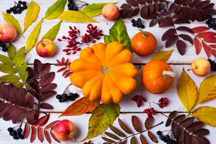Fall leaves, pumpkin, berries on the white painted wood
