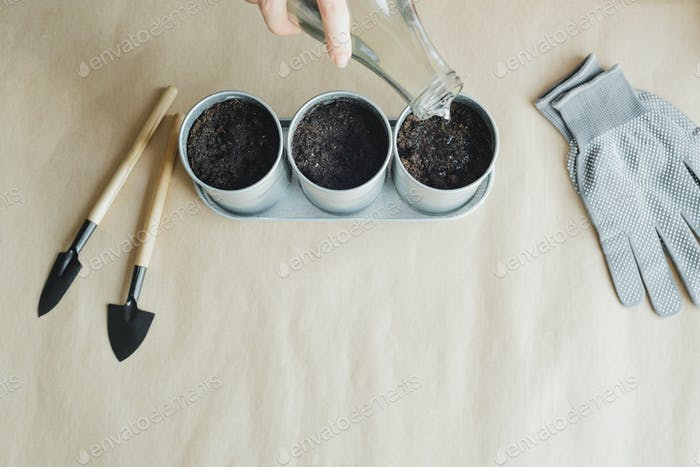 woman planting seeds in metal pots