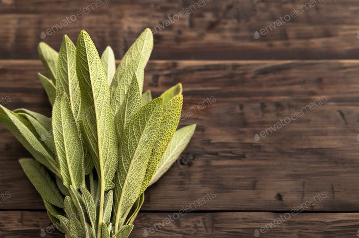 Fresh sage at left side of wooden table