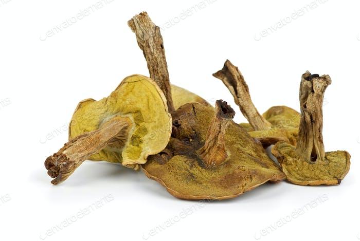 Few dried cepe mushrooms