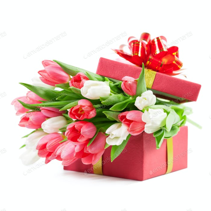 Tulips in a gift box