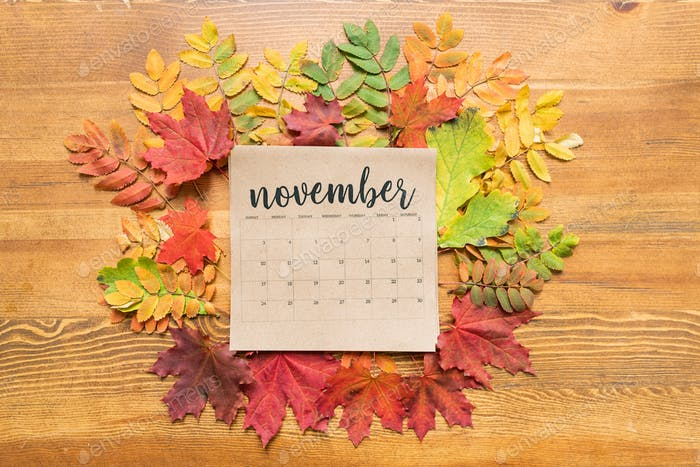 November calendar sheet surrounded by autumn leaves of various colors