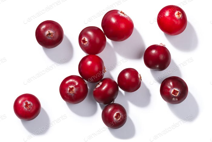 Cranberries v. oxycoccus, top view, paths