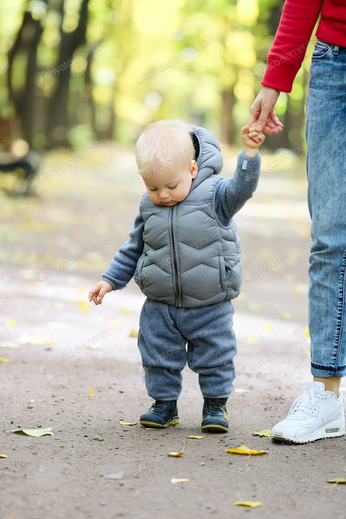 One year old baby boy in autumn park learning to walk with his mother
