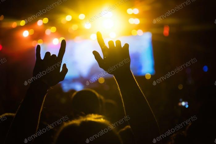 Bild von Partymenschen auf dem Musikfestival