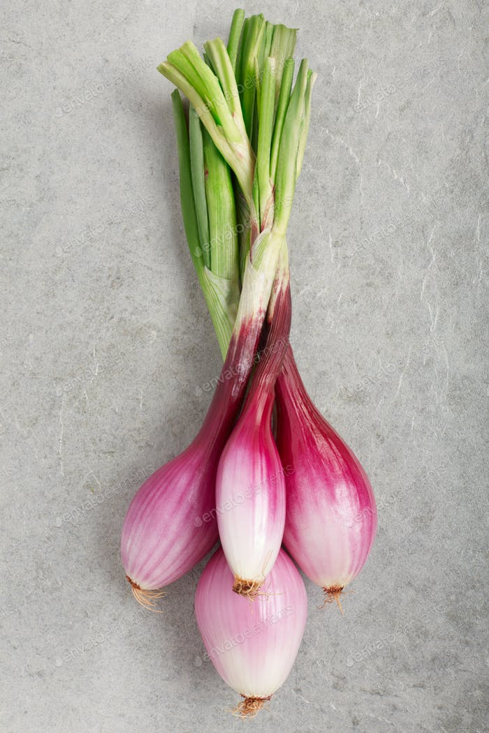 Red onions bunch, Tropea type, on gray stone background