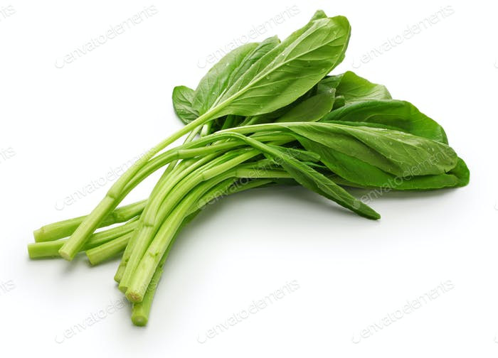 choy sum, chinese vegetable