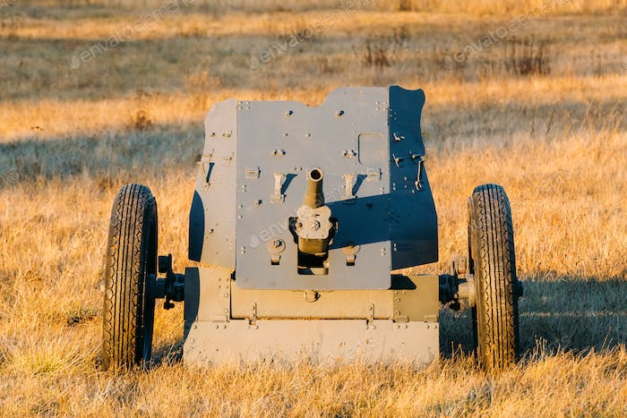 German Anti-tank Gun In Field