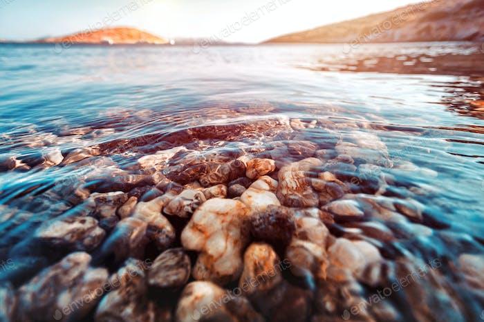Beauty of underwater nature