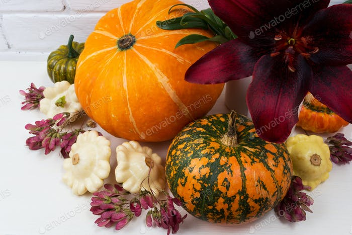 Fall decor with burgundy red lily and pumpkins