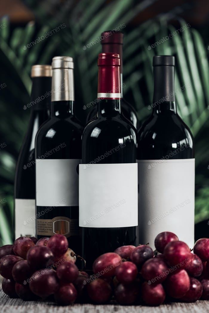 Bottles Of Red Wine And Grapes